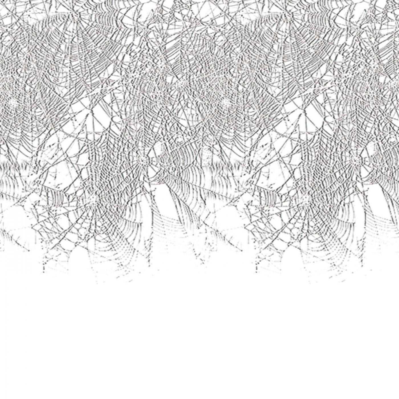 Spider Web Border (6) image