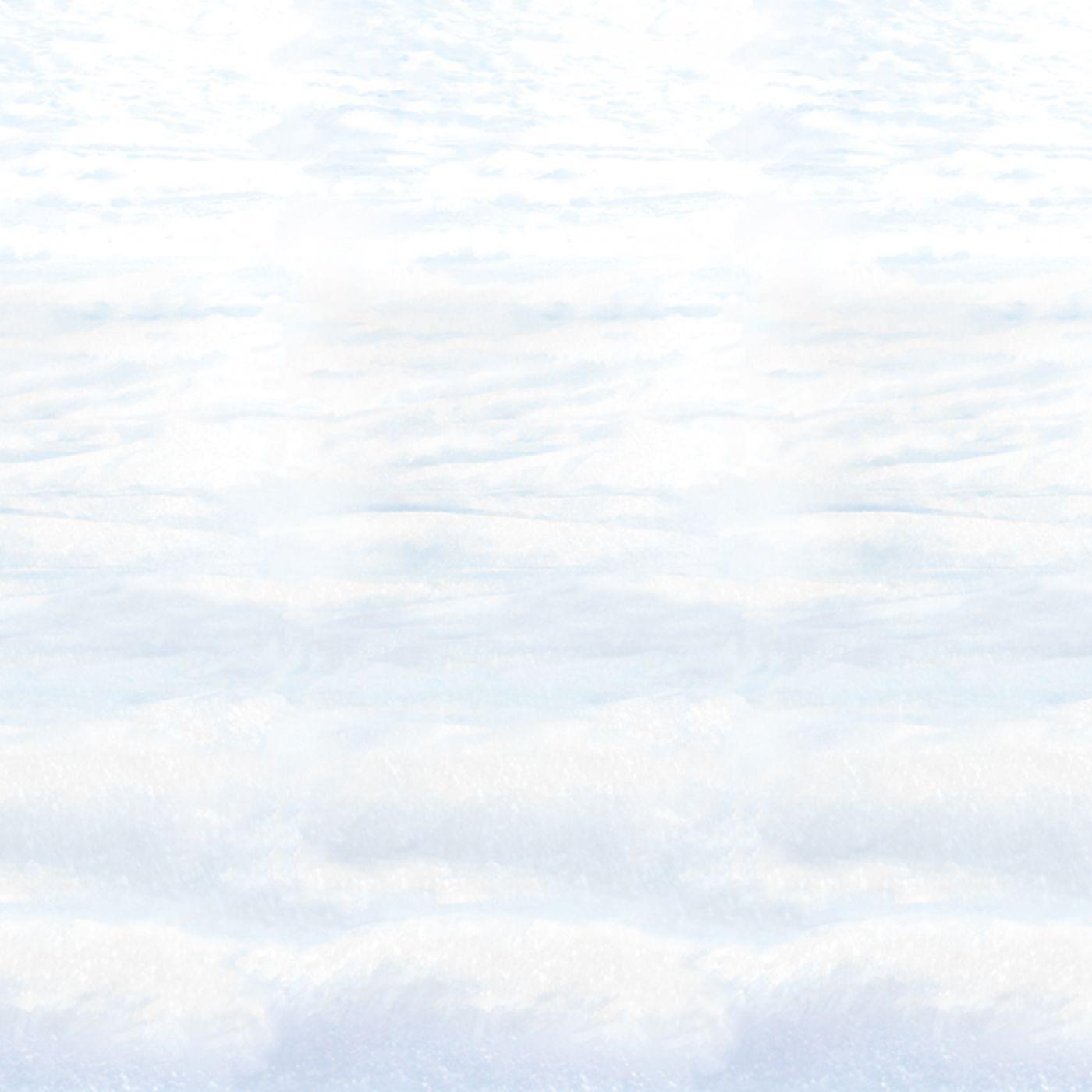Snowscape Backdrop (6) image