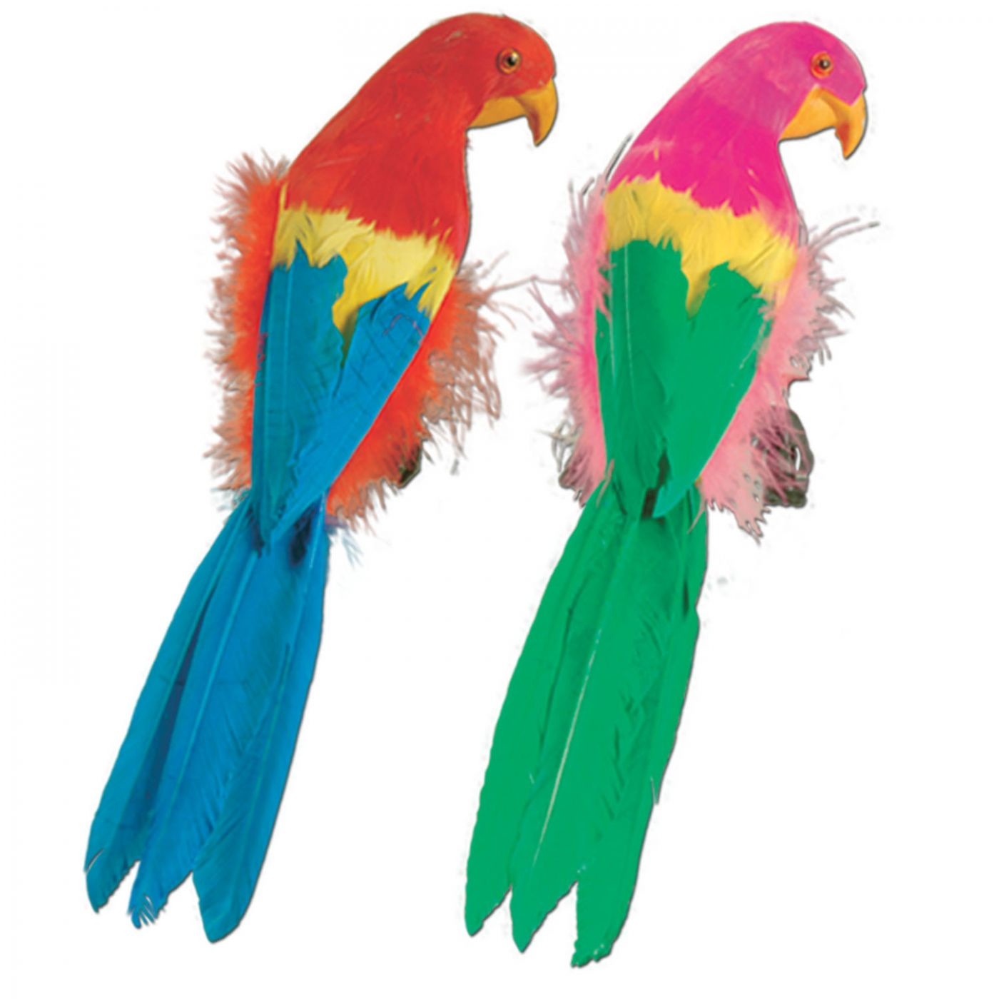 Image of Feathered Parrots (6)