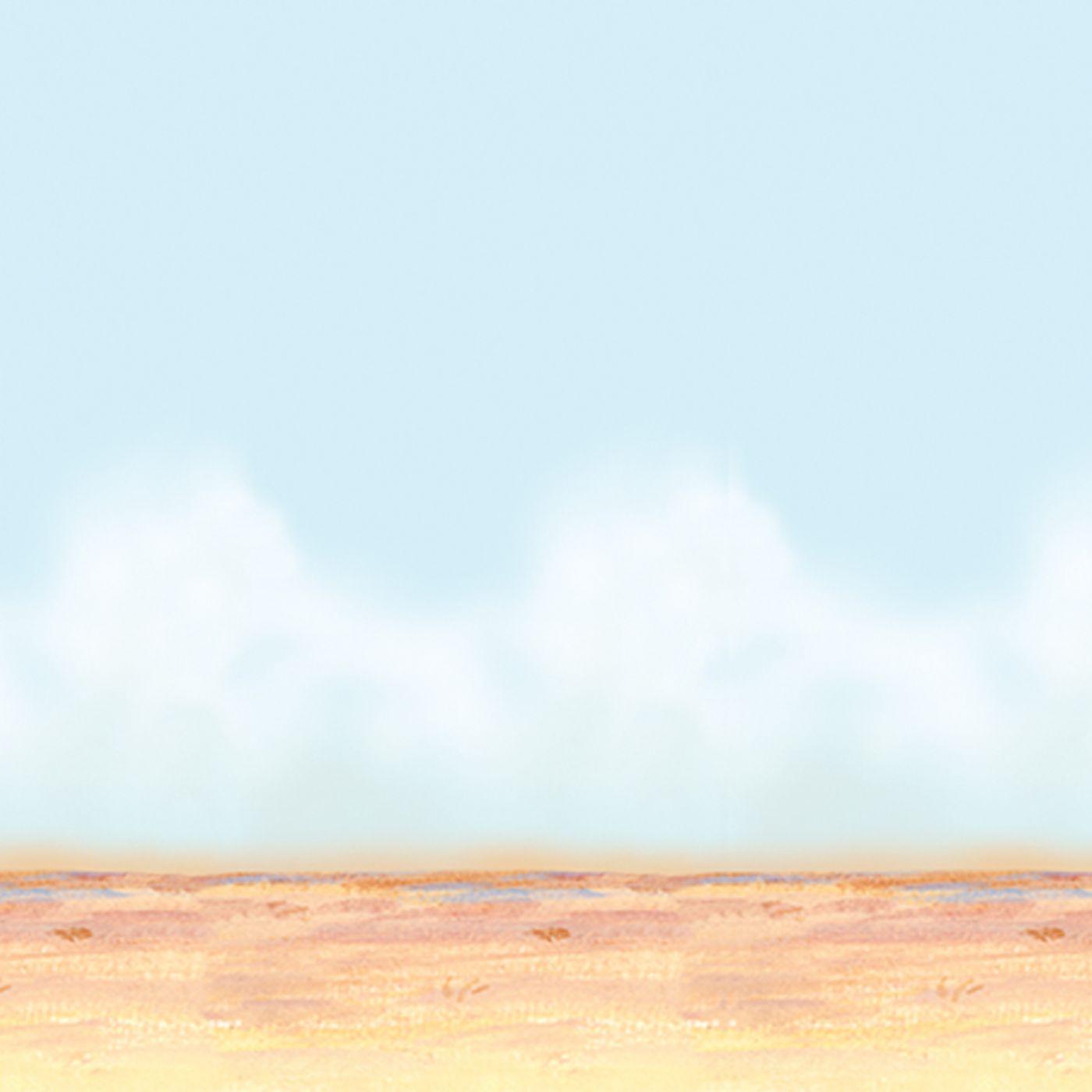 Desert Sky & Sand Backdrop (6) image