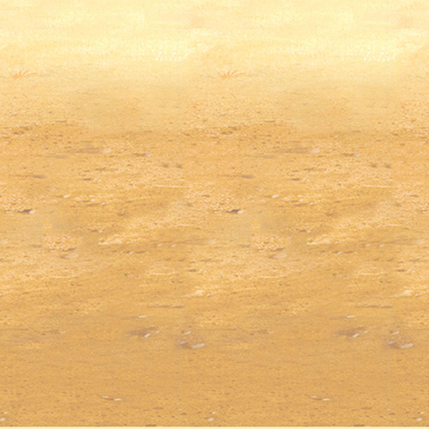 Desert Sand Backdrop (6) image