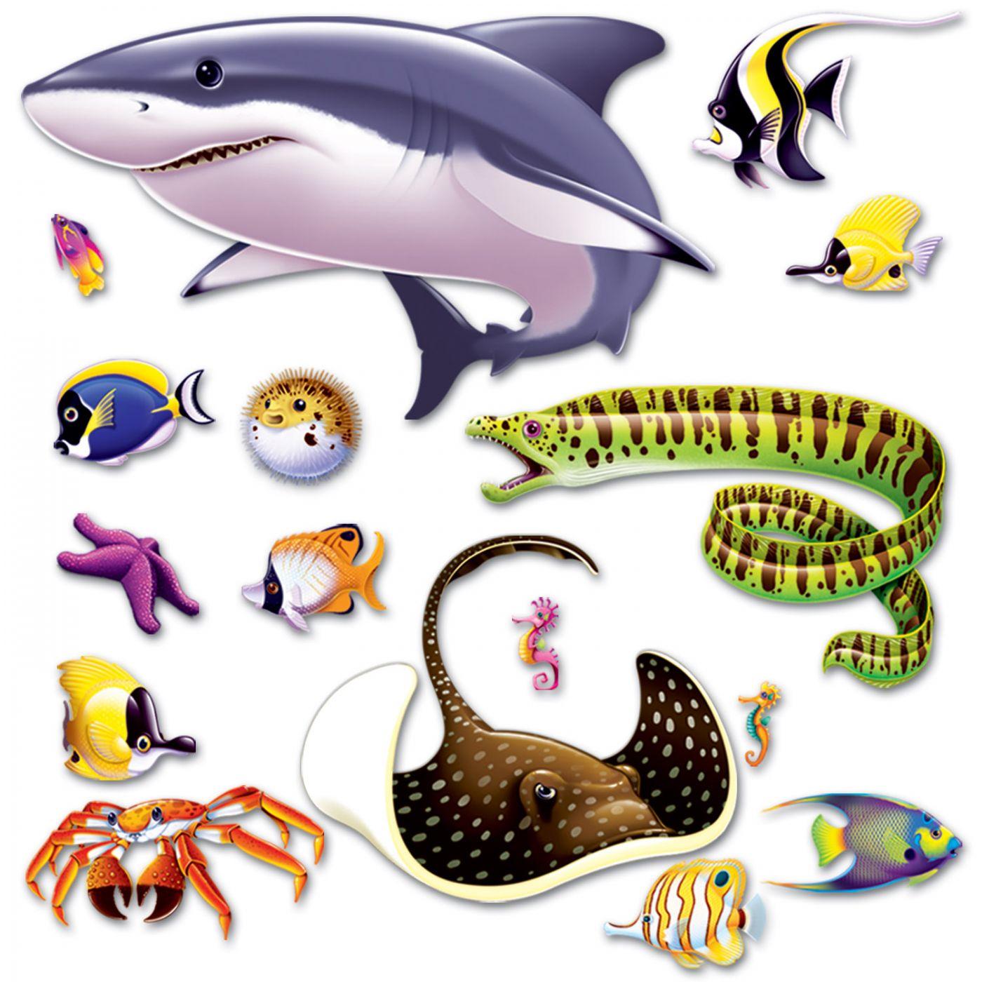 Marine Life Props image