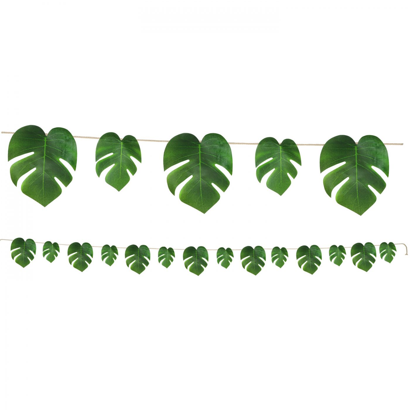 Tropical Palm Leaves Streamer image