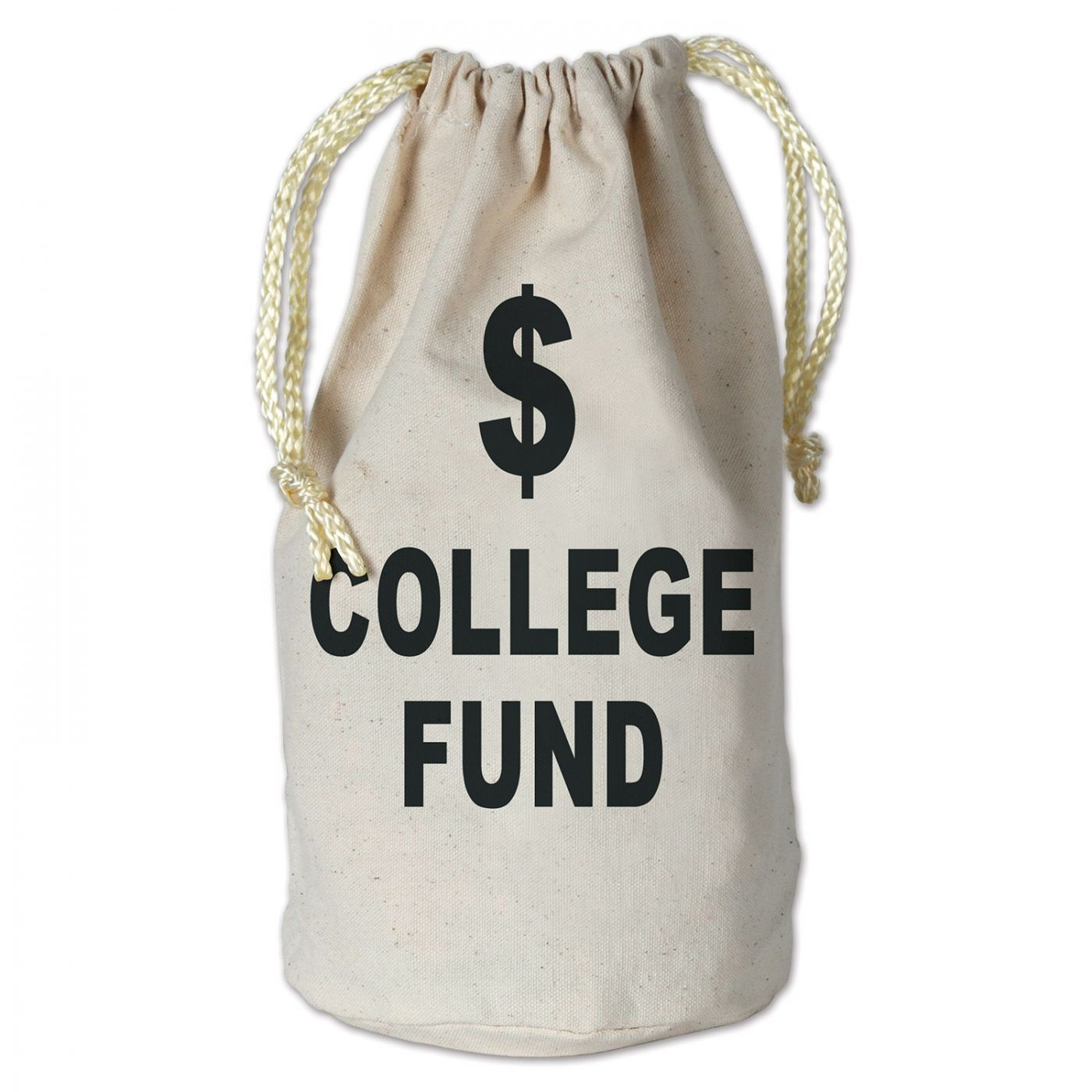 College Fund Money Bag image